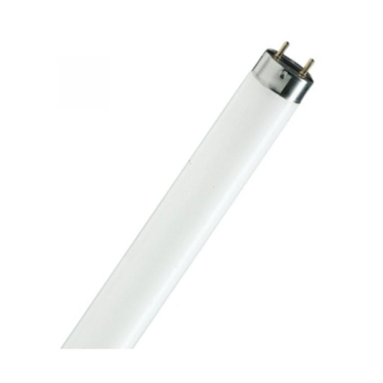 Лампа люминесцентная DELUX T8 36W/54 G13