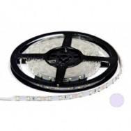 Светодиодная лента 12В B-LED 3528-60W белый 1м